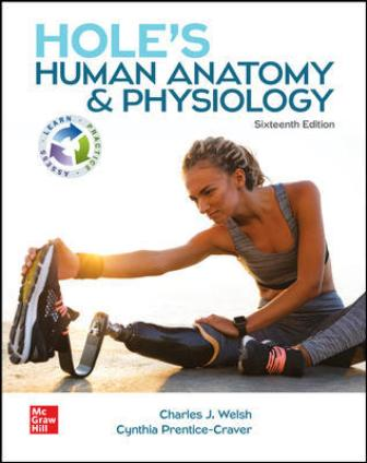Test Bank for Hole's Human Anatomy & Physiology 16th Edition Welsh