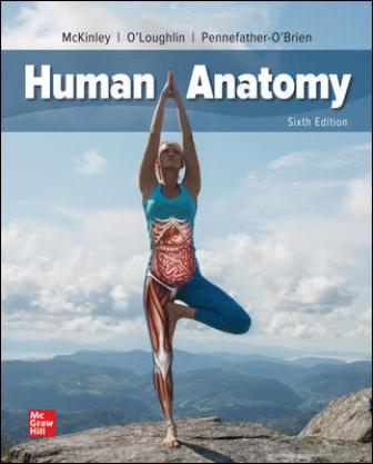 Test Bank for Human Anatomy 6th Edition McKinley