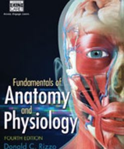 Test Bank for Fundamentals of Anatomy and Physiology 4th Edition Rizzo